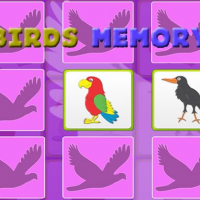 Kids Memory Game - Birds
